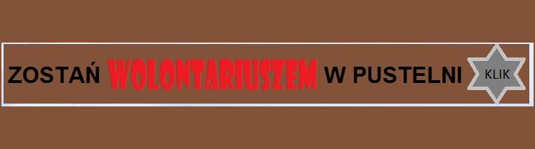 pasek-wolont2